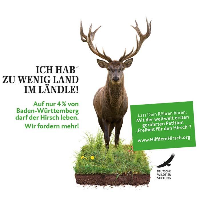 freiheit_fuer_den_rothirsch
